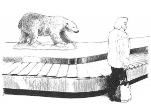 Luggage Bear