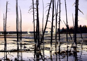Drowned Trees <br>in Lower <br>Geyser Basin