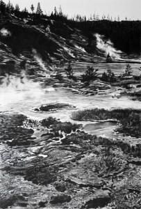 Gibbon Geyser Basin