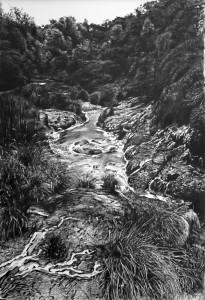 Haumi Stream, Waimangu Valley