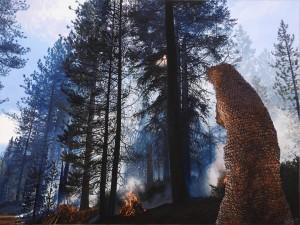 Pine Cone Shroud <br>(Sagehen Creek <br>Experimental Forest,<br> Sierra Nevada)