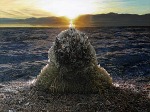 Accumulated Matter <br>(Salton Sea Shore)