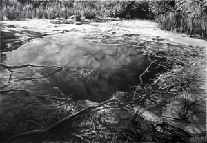 Tokaanu Thermal Pool
